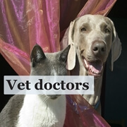 vet doctors ads 01 Copy
